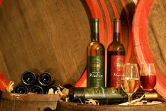 Bucharest Wine Tours